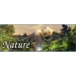 Nature 3D Screensaver download