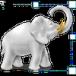 Image Tuner download