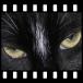 PhotoFilmStrip download