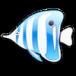 Seashore til Mac download
