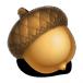 Acorn for Mac download