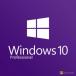 Windows 10 Professional download