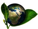 CSR i en digital verden