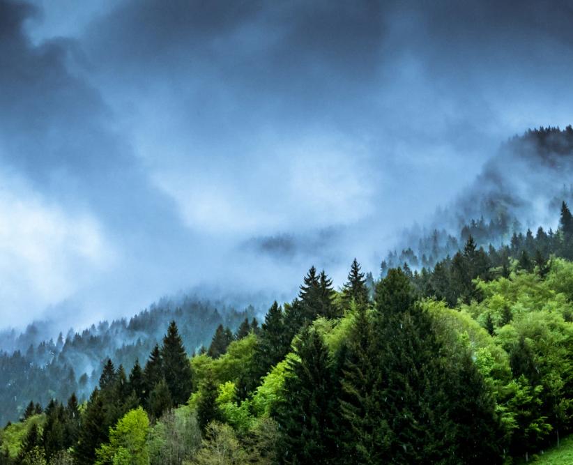 5 miljø- og klimavenlige tiltag